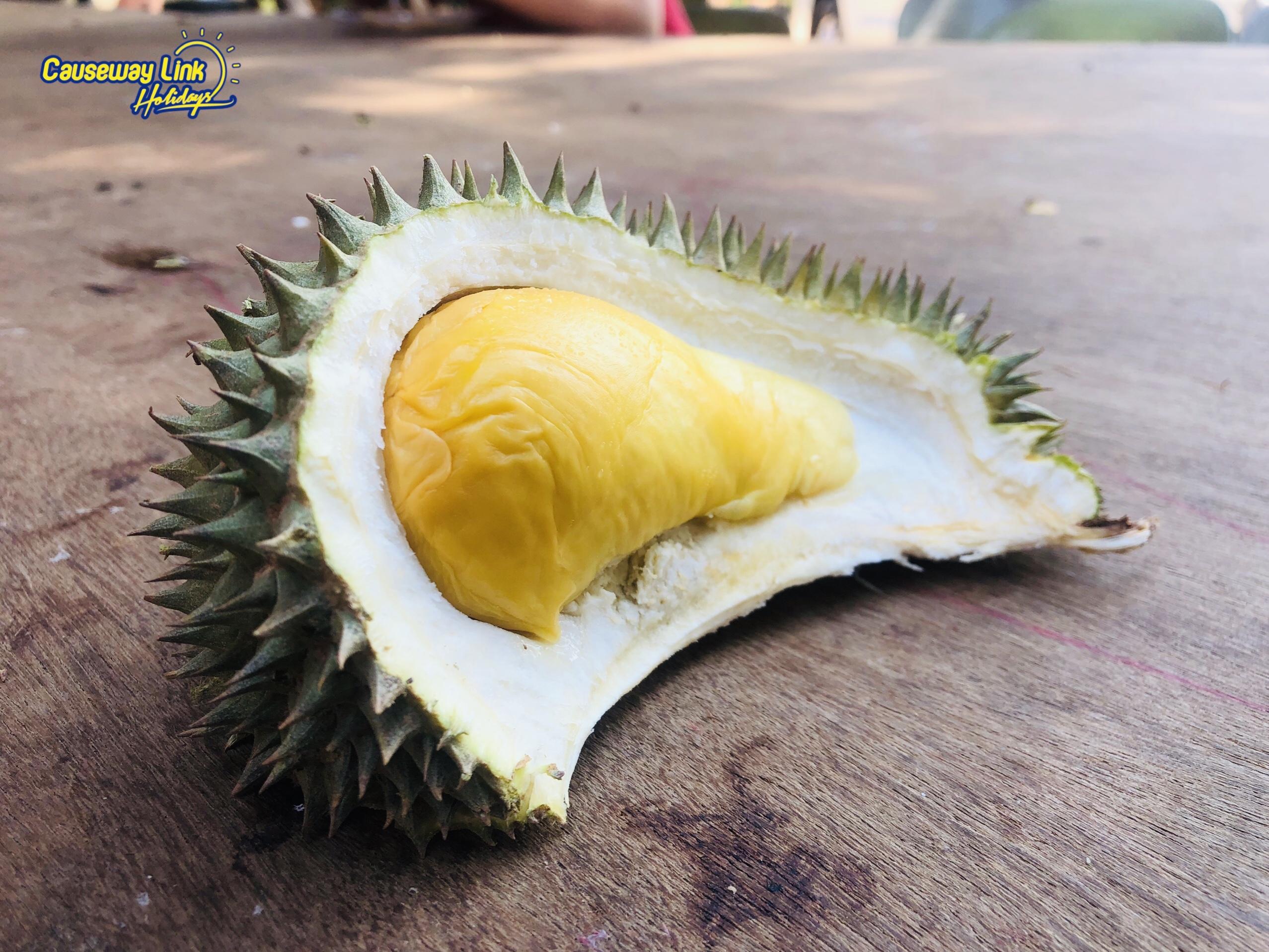 Causeway Link Holidays Durian Trip